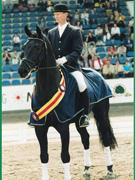 Katy Holder-Vale's Witcham House Farm Stud breeding Hanoverian stallions for dressage introduces Glücksfall / Flammengold.