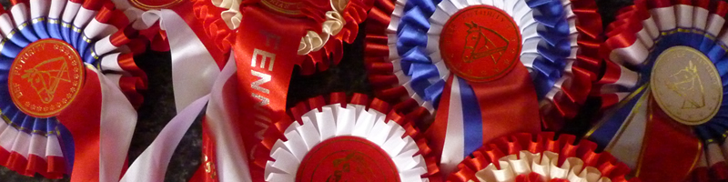 Katy Holder-Vale's Witcham House Farm Stud breeding Hanoverian stallions for dressage.